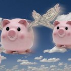 Why I Hope These Pigs Never Fly - and You Should, Too